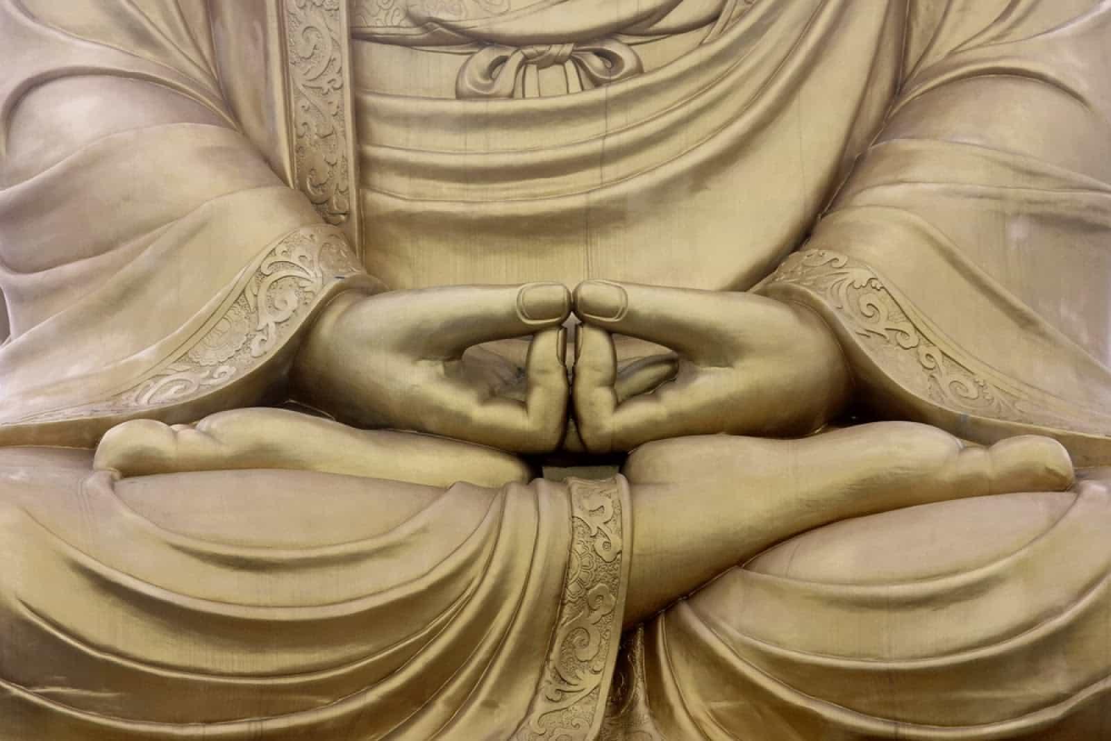 Meditazione e normodinamica. Di Nicola Vitale